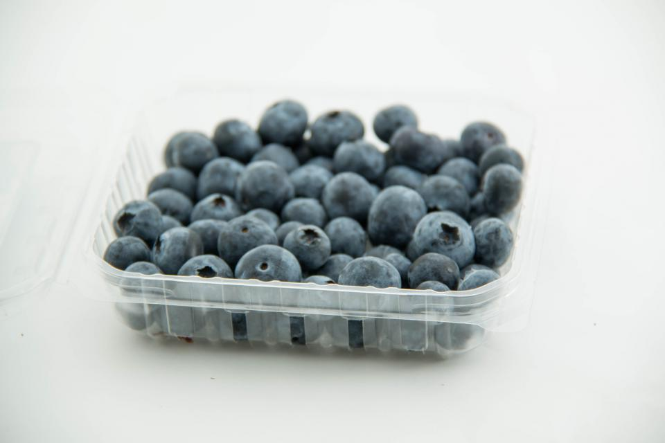 Bluberry trays
